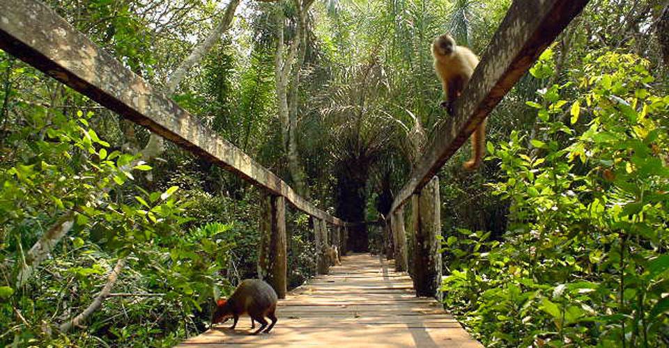 Bonito - Brazil eco-tourism