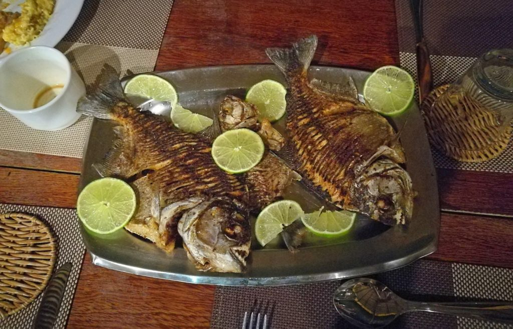 Freshly caught fish for dinner (piranha, no less!), in Amazon Brazil