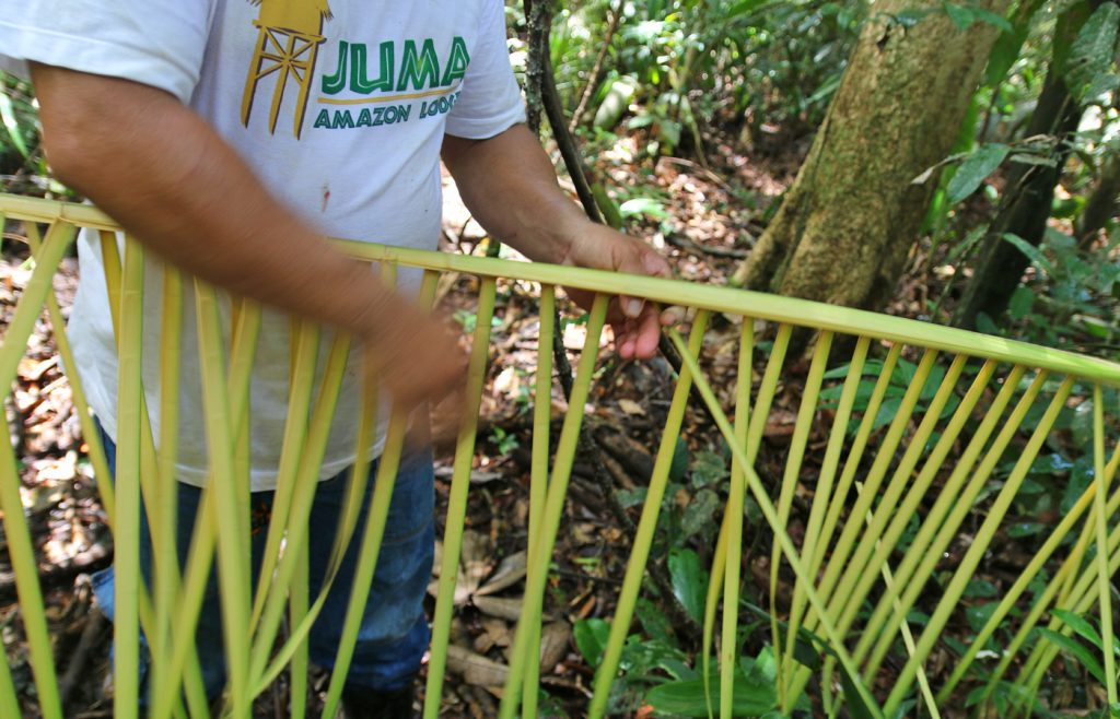 Our guide showing us how they create thatch for housing using local plants. Juma, Amazon, Brazil