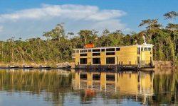 The Untamed Amazon River Cruise  for Amazon Experiences and Sport Fishing Trips in Brazil