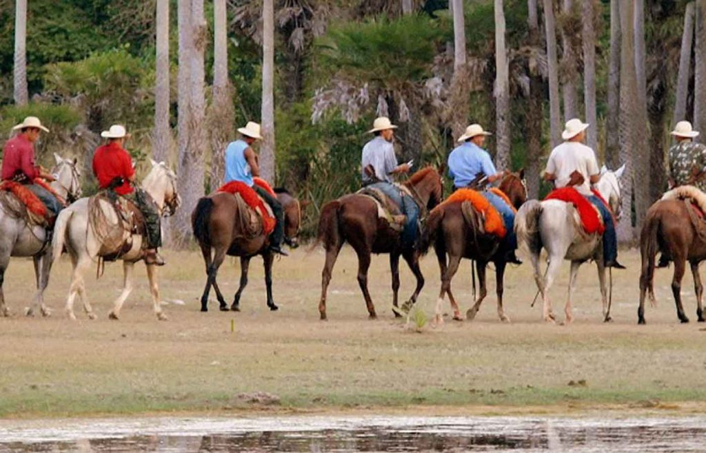 Cowboys in the southern Pantanal - Fazenda Barranco Alto